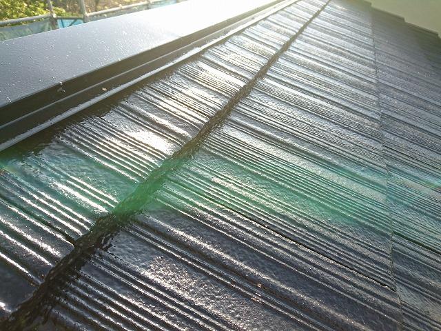 高圧洗浄で苔除去し、塗装で保護
