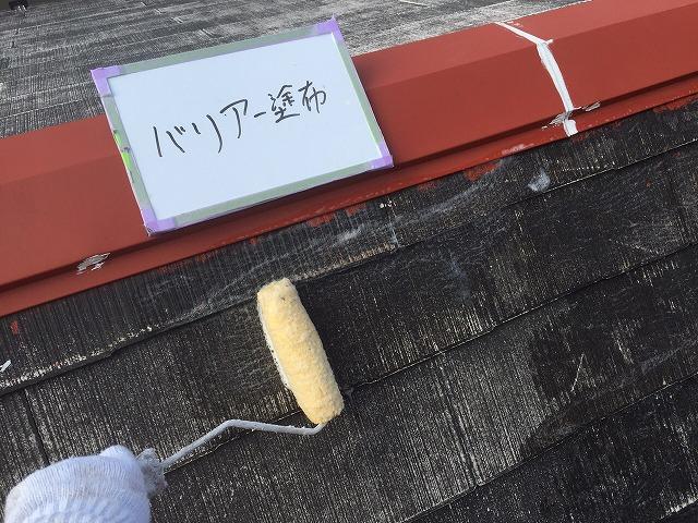 屋根 殺菌処理