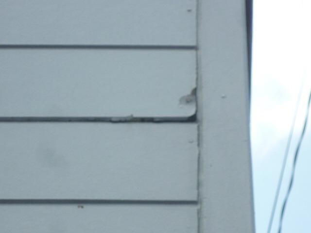 凍害により外壁破損