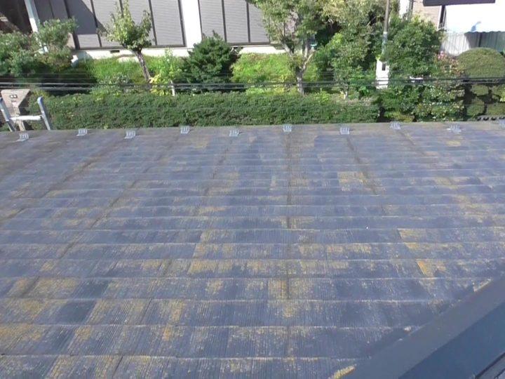屋根 苔の発生