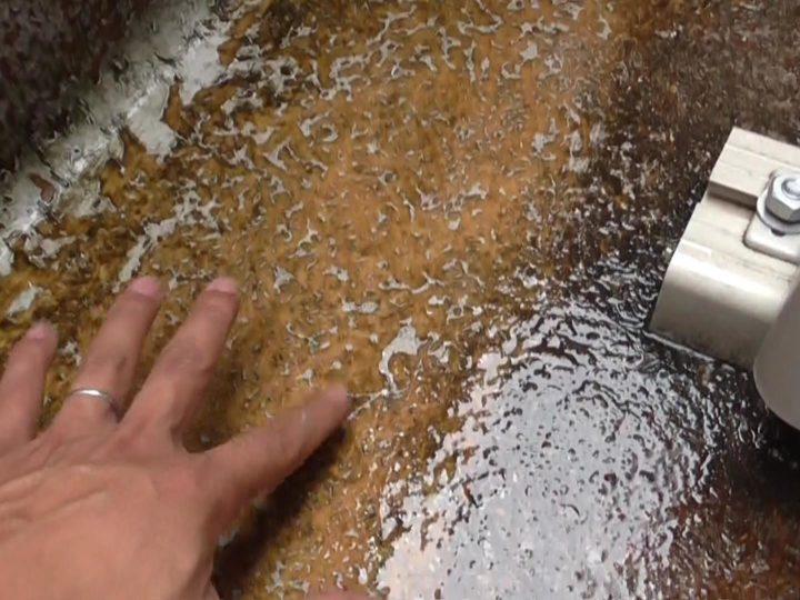 FRP防水 塗膜剥離