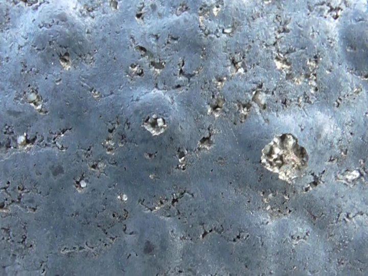 表面塗膜剥離