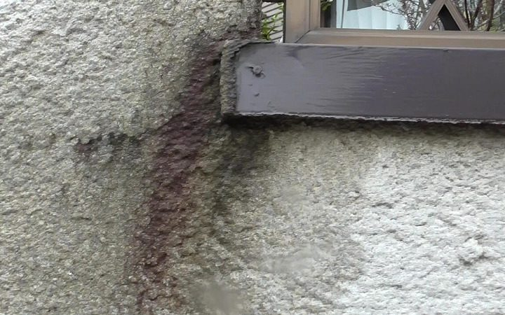 雨水が滞留して浸み込み苔なども発生