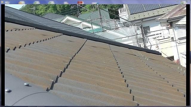 屋根苔塗膜剥離
