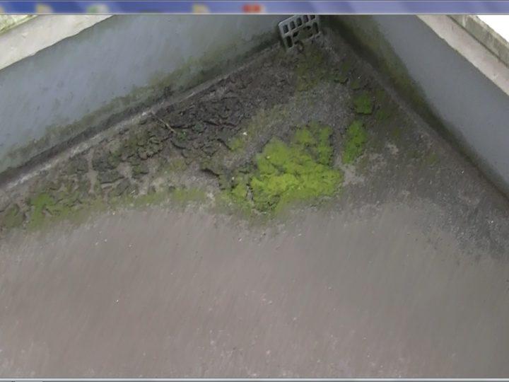 ベランダ含む防水層の表面トップコートが劣化し、水が滞留してしまう状態です。