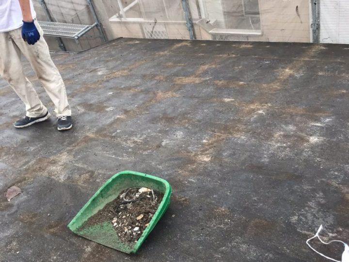 合板設置前清掃