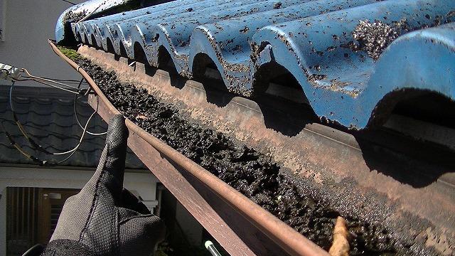 屋根苔の発生 樋の詰まり