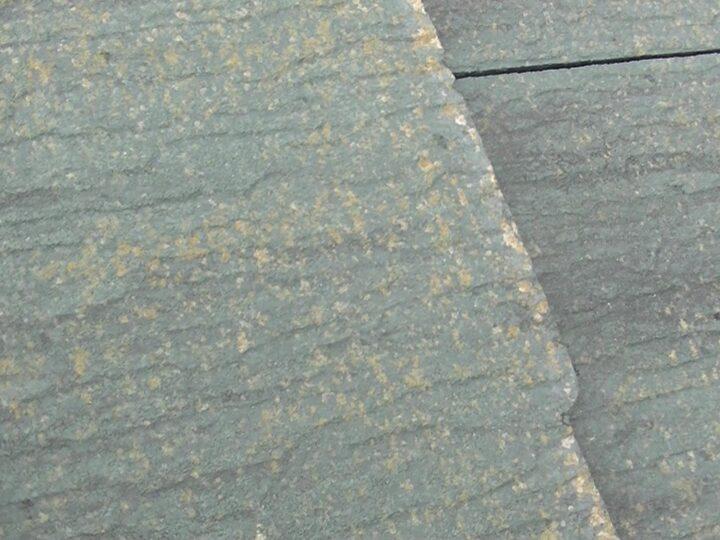 屋根 苔・塗膜剥離
